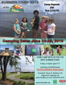 Summer camp flyer image